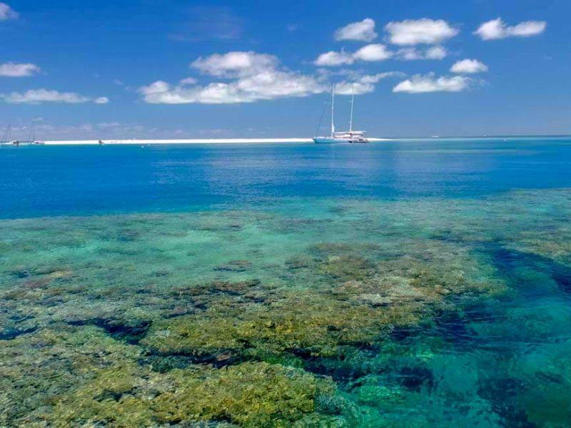 Michaelmas Cay 1