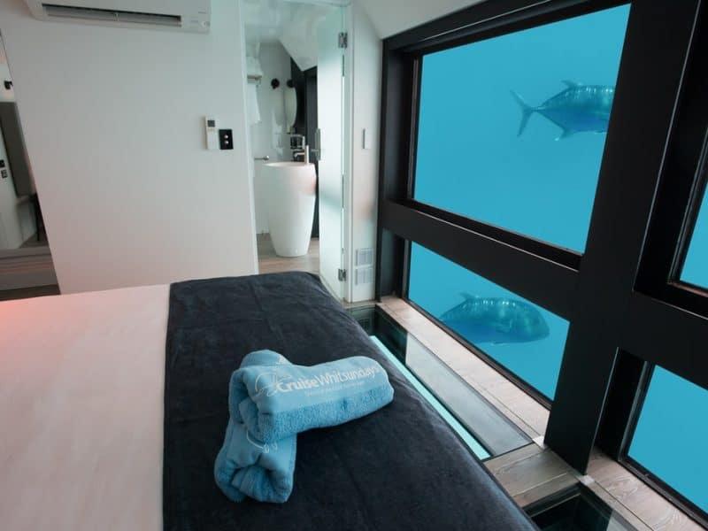 reef sleep cruise whitsundays