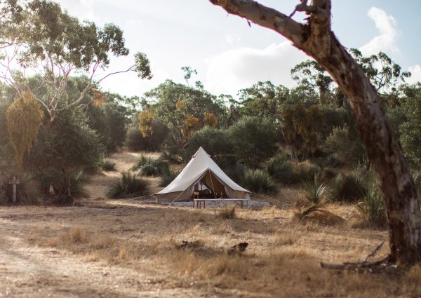 tent on a hill