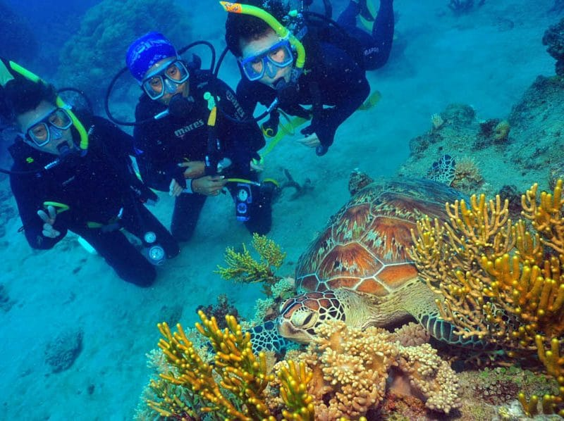 underwater snorkeling