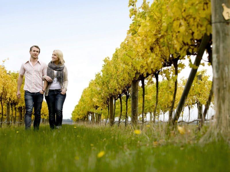 Australian Natural Treasure Food and Wine 2